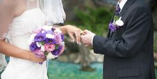 Free Groom And Bride Hands Royalty Free Stock Image - 34939556