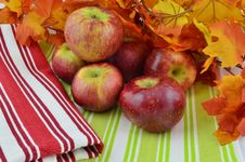 Free Fresh Ripe Apples On Display Stock Images - 34943204