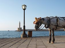 Free Horse In Hat On Sea Quay With Lighthouse Stock Photos - 34947733