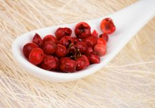 Free Red Peppercorn Royalty Free Stock Images - 34949739