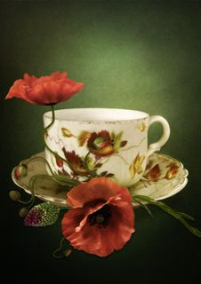 The Cup With Poppies Stock Images