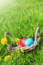 Free Wicker Basket With Easter Eggs Stock Photos - 34963573