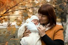 Free Newborn On The Mother Hands In Autumn Royalty Free Stock Photography - 34966747