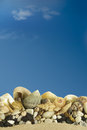 Free Sea Shells With Blue Sky. Royalty Free Stock Image - 34977526