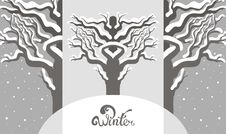 Free Winter Silver Background Stock Photo - 34981360