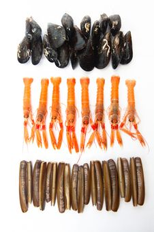 Free Mussels, Norway Lobsters And Razor Shells. Varied Seafood. Stock Photos - 34987853