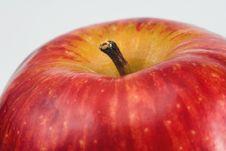 Free Apple Royalty Free Stock Photo - 351995