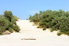 Free Dune Royalty Free Stock Photos - 355068