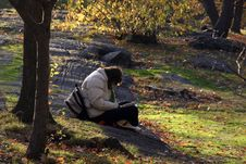 Free Reading In The Park Stock Photos - 355633