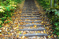 Free Autumn Stock Images - 3500334