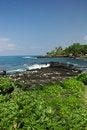 Free Coast Of Kona Hawaii Royalty Free Stock Photography - 3508827