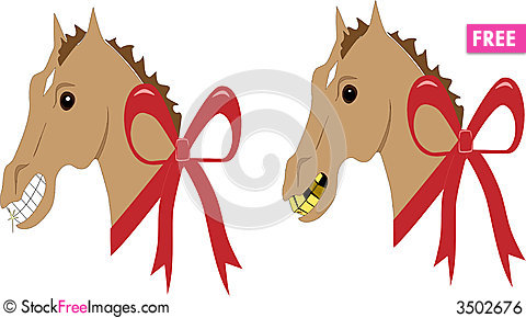 Look a gift horse in the mouth free stock images photos look a gift horse in the mouth negle Image collections
