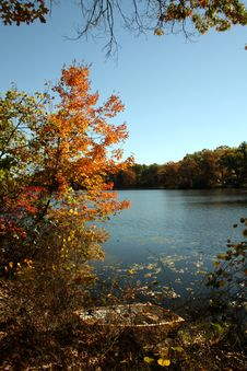 Free Fall At The Lake Stock Images - 3501454