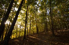 Hiking Trail In The Autumn Royalty Free Stock Photography