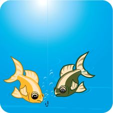 Free Two Fishes Looking At Hook Royalty Free Stock Photography - 3504457