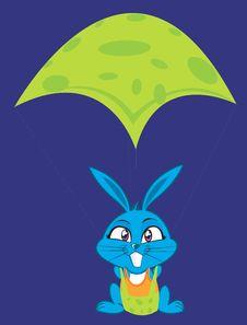 Free Flying Rabbit Royalty Free Stock Photo - 3504535