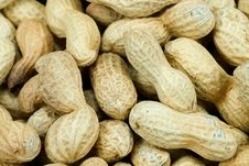 Free Lots Of Peanuts Stock Photography - 3504922