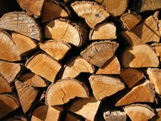 Free Logs Stock Image - 3505791