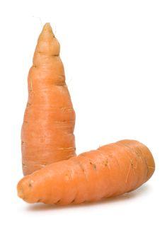 Free Carrots Royalty Free Stock Photography - 3507157