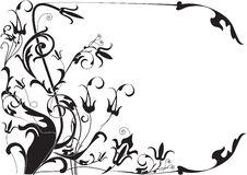 Free Flower Stock Image - 3508301