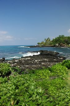 Free Coast Of Kona Hawaii Royalty Free Stock Photography - 3508827