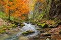 Free Galbena Canyon Autumn Stock Photo - 35054750