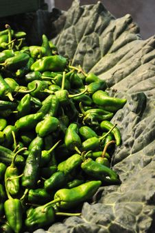 Free Green Pepper Royalty Free Stock Photos - 35055508