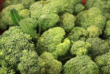 Free Cabbage - Broccoli - Brassica Silvestris Stock Photo - 35072970
