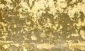 Free Grunge Wall Stock Photos - 3514633