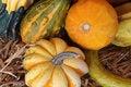 Free Halloween Pumpkins Royalty Free Stock Photos - 3516518