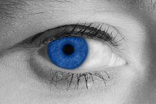 Free Blue Eye Stock Image - 3511731