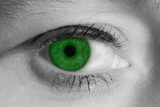 Free Green Eye Stock Images - 3511814