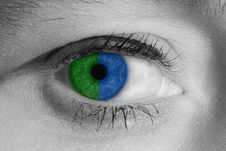 Free Blue Eye Stock Photos - 3511843