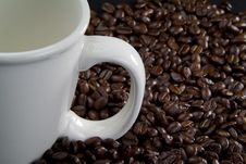 Free Coffee Beans Coffee Cup Royalty Free Stock Photography - 3512227