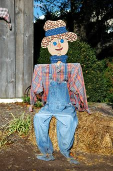Free Scarecrow Sitting Royalty Free Stock Images - 3514089