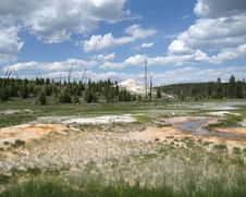 Free Upper Geyser Basin Royalty Free Stock Images - 3515519