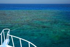 Free Reef In Egypt. Stock Photo - 3515820