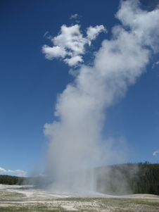 Free Old Faithful Geyser Royalty Free Stock Image - 3515856