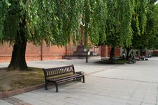 Bench Under The Tree Royalty Free Stock Photography