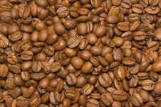 Free Coffee Background Stock Photography - 3516312