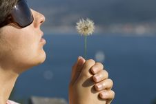 Free Woman Holding Dandelion Stock Images - 3517354