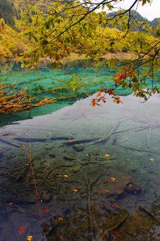 Free Colorful Lake Stock Image - 3518861
