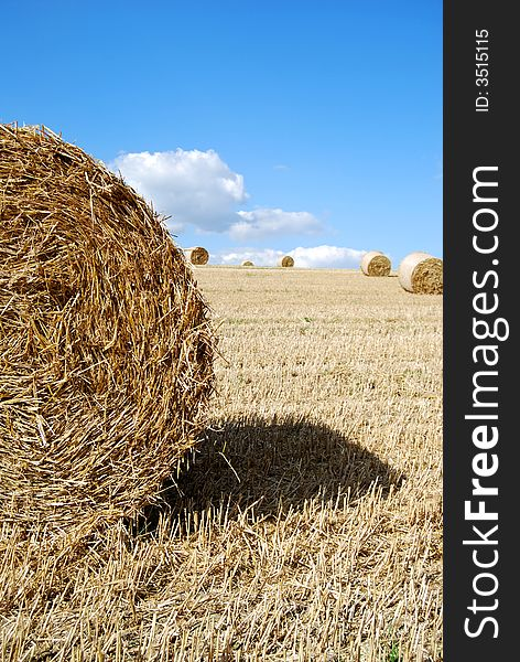 Close photo of a hay bale