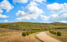 Old Country Road In Tuscany Stock Image