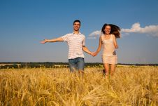 Free Young Couple Running Through  Wheat Field Royalty Free Stock Images - 35102619