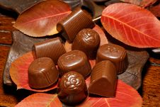 Free Autumn Chocolates Stock Image - 35103301