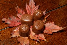 Free Autumn Chocolates Stock Photos - 35103303