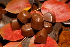 Free Autumn Chocolates Stock Images - 35103304