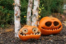 Free Halloween Pumpkin Royalty Free Stock Photography - 35103587