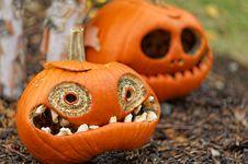 Free Halloween Pumpkin Royalty Free Stock Photo - 35103595
